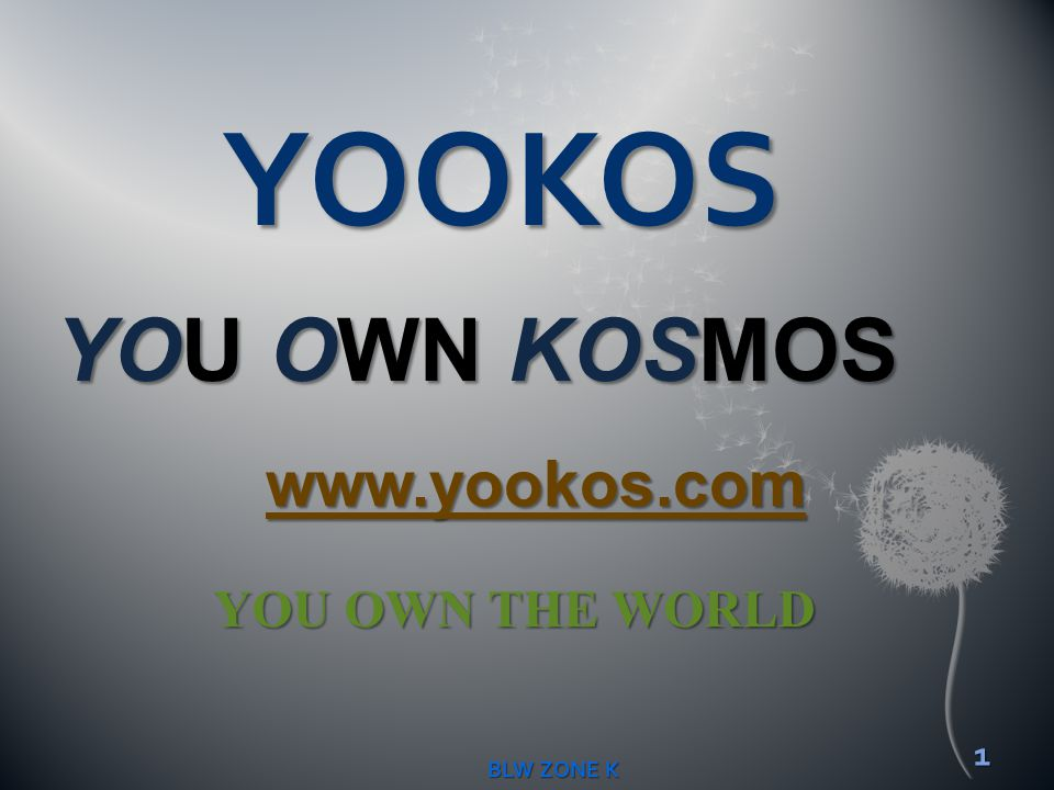 YOOKOS YOU OWN KOSMOS www.yookos.com YOU OWN THE WORLD BLW ZONE K
