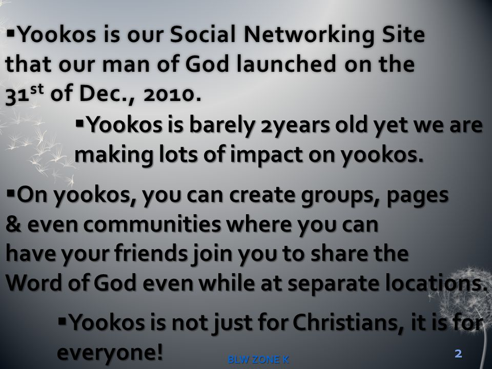 Yookos is barely 2years old yet we are