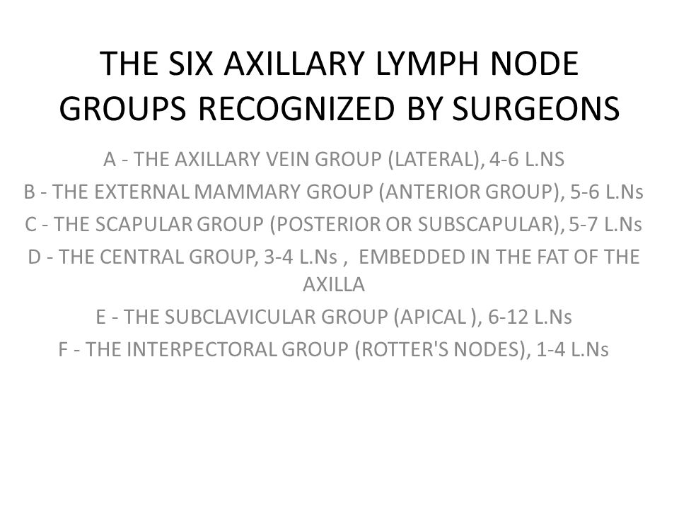 THE SIX AXILLARY LYMPH NODE GROUPS RECOGNIZED BY SURGEONS