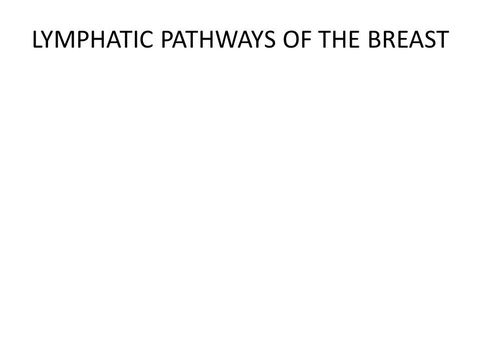 LYMPHATIC PATHWAYS OF THE BREAST