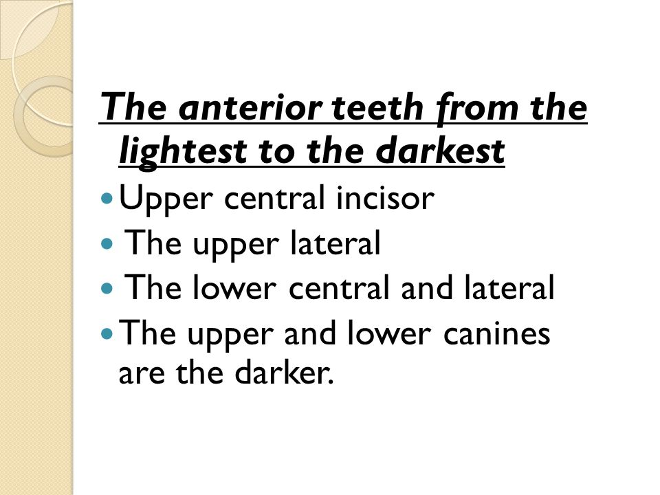 The anterior teeth from the lightest to the darkest
