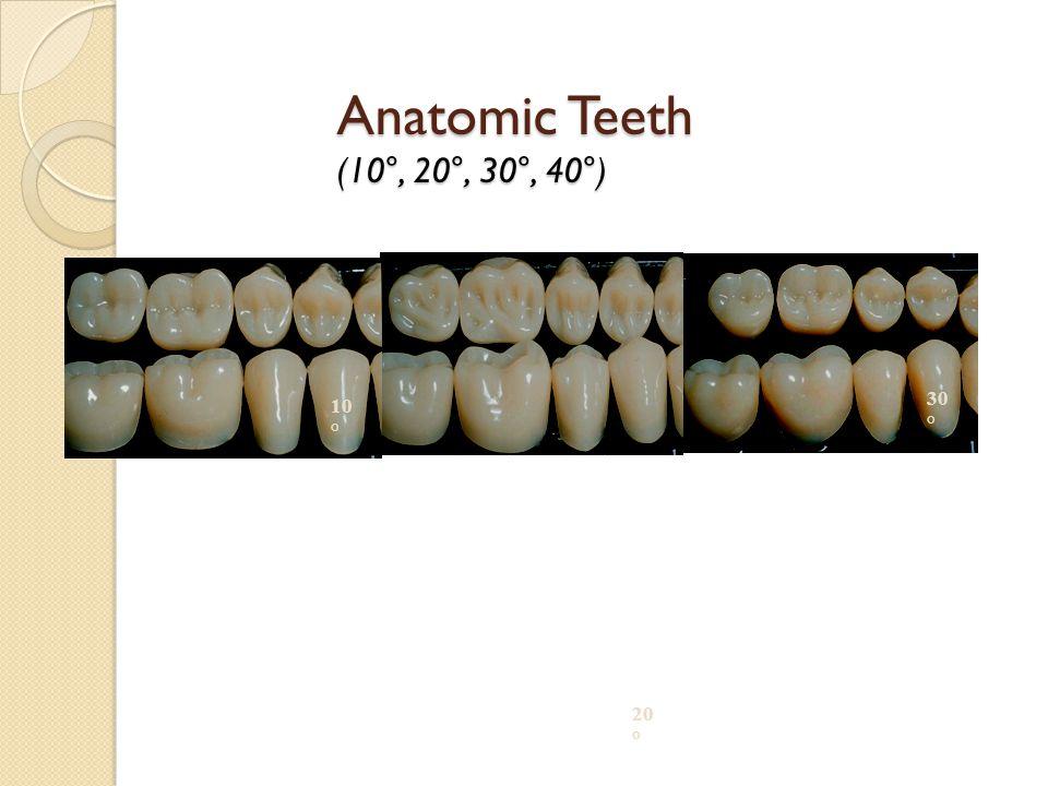 Anatomic Teeth (10°, 20°, 30°, 40°) 10° 20° 30°