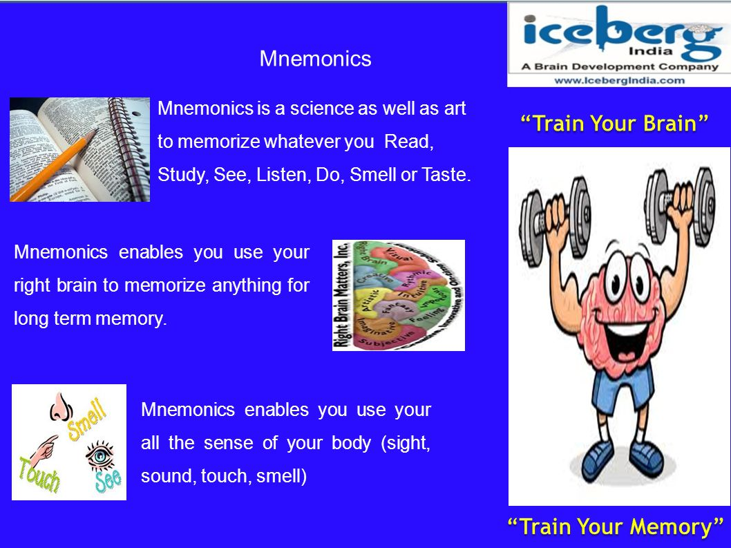Train Your Brain Train Your Memory