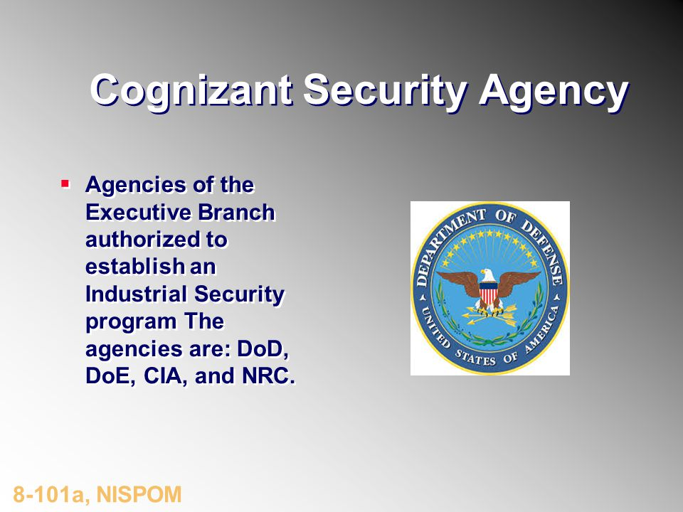 Cognizant Security Agency