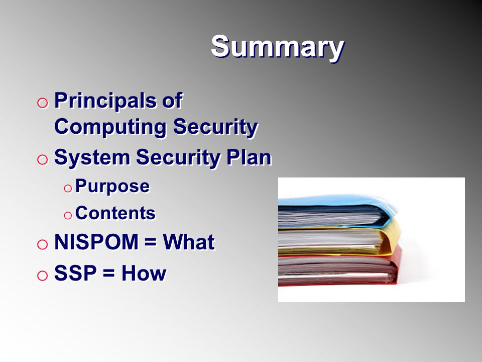 Summary Principals of Computing Security System Security Plan