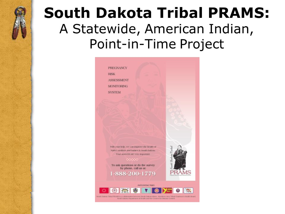South Dakota Tribal PRAMS: A Statewide, American Indian, Point-in-Time Project