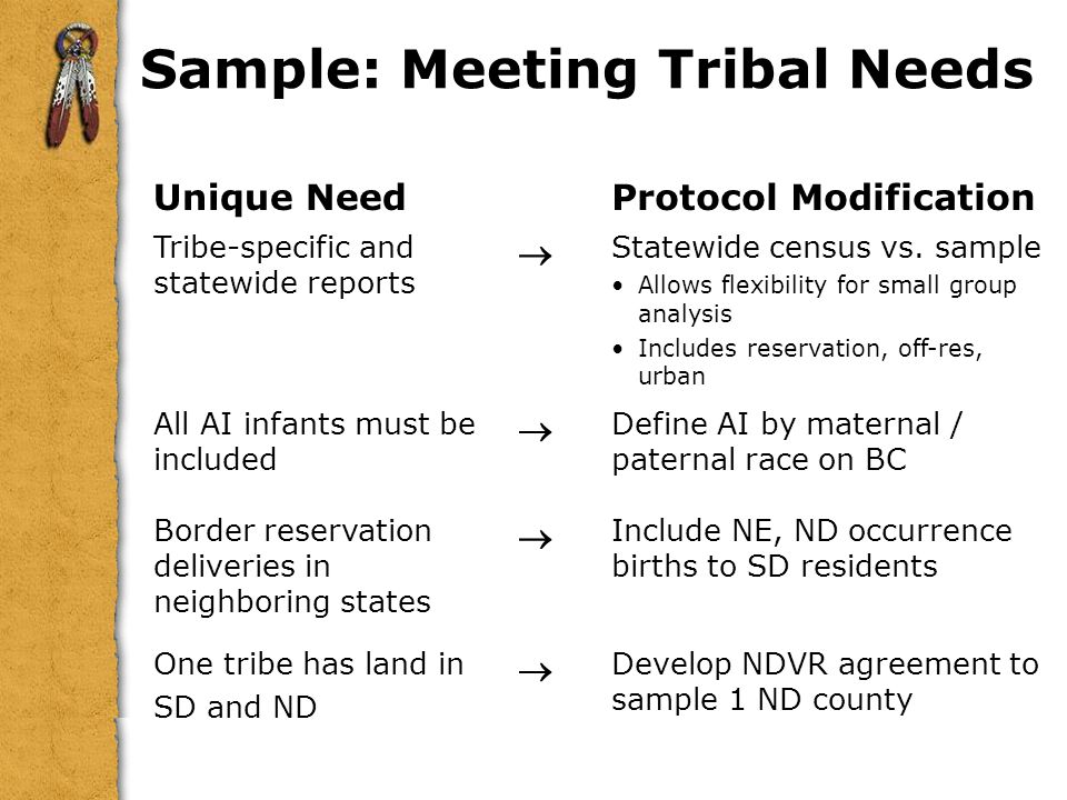 Sample: Meeting Tribal Needs