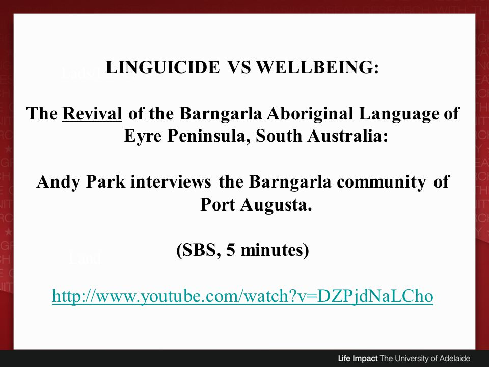LINGUICIDE VS WELLBEING:
