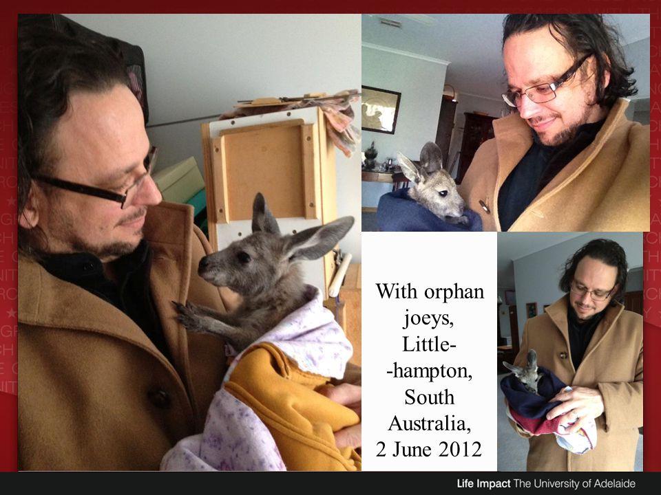 -hampton, South Australia,