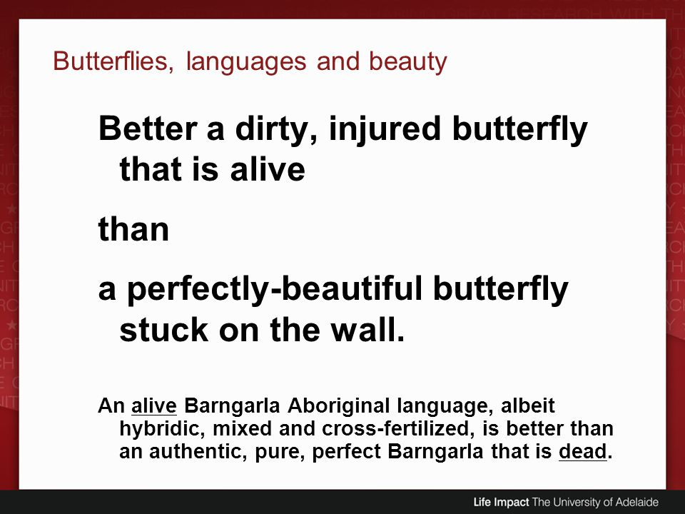 Butterflies, languages and beauty