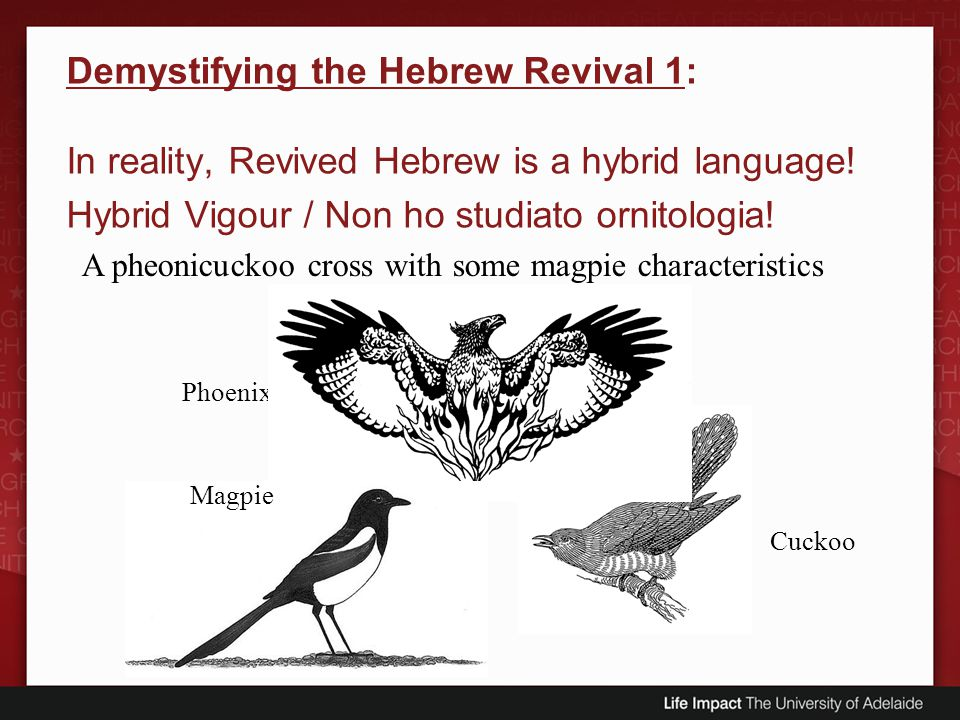 Demystifying the Hebrew Revival 1: In reality, Revived Hebrew is a hybrid language! Hybrid Vigour / Non ho studiato ornitologia!