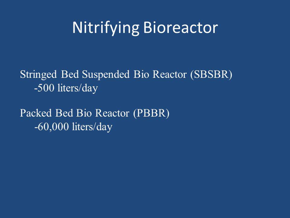 Nitrifying Bioreactor