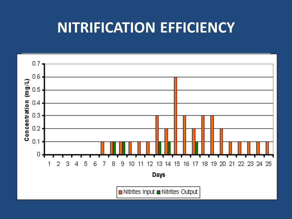 NITRIFICATION EFFICIENCY