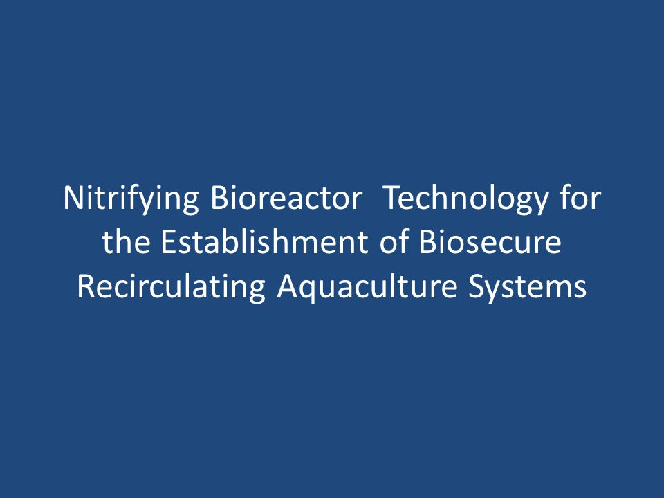 Nitrifying Bioreactor Technology for the Establishment of Biosecure Recirculating Aquaculture Systems