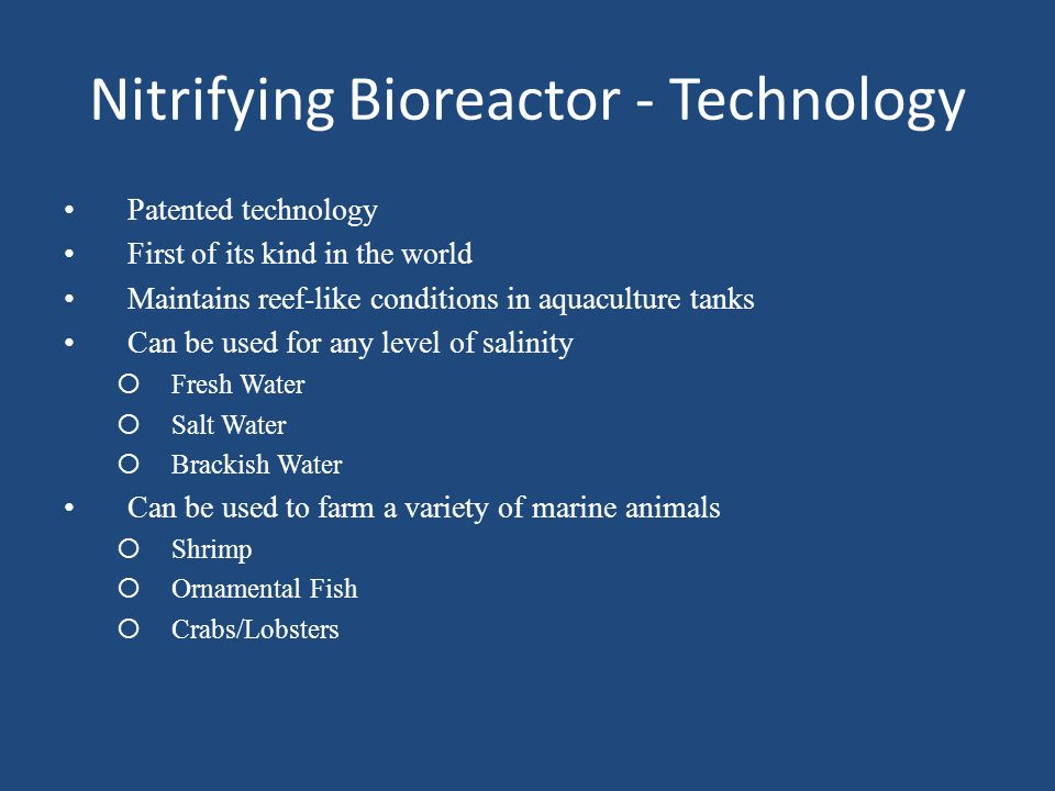Nitrifying Bioreactor - Technology