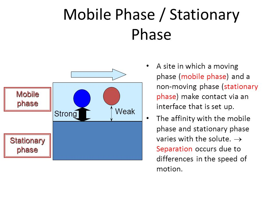 Mobile Phase / Stationary Phase