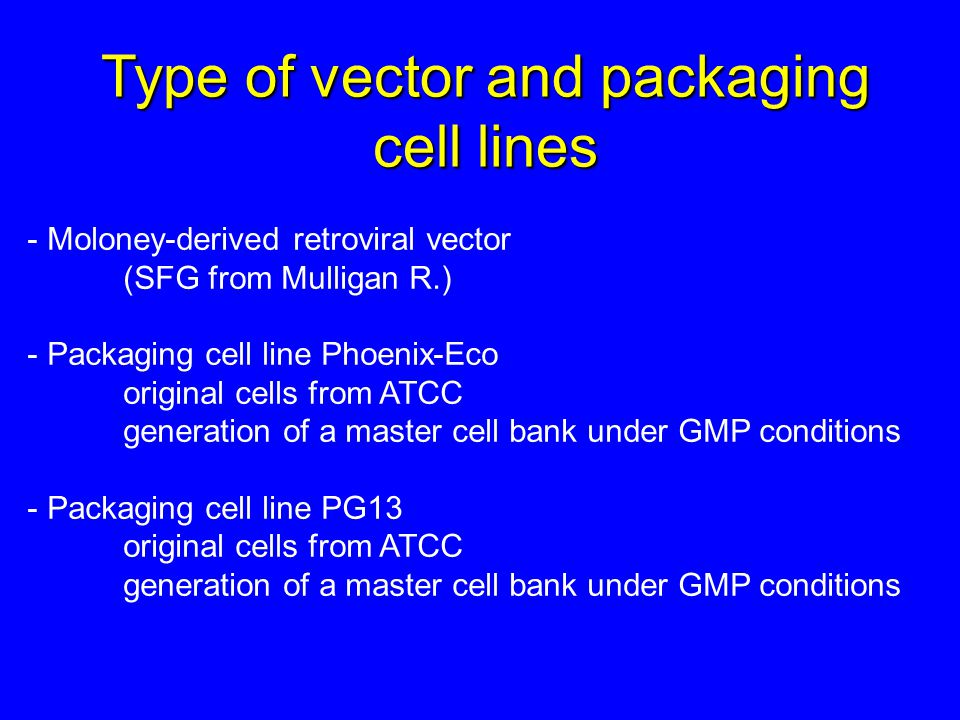 Type of vector and packaging cell lines