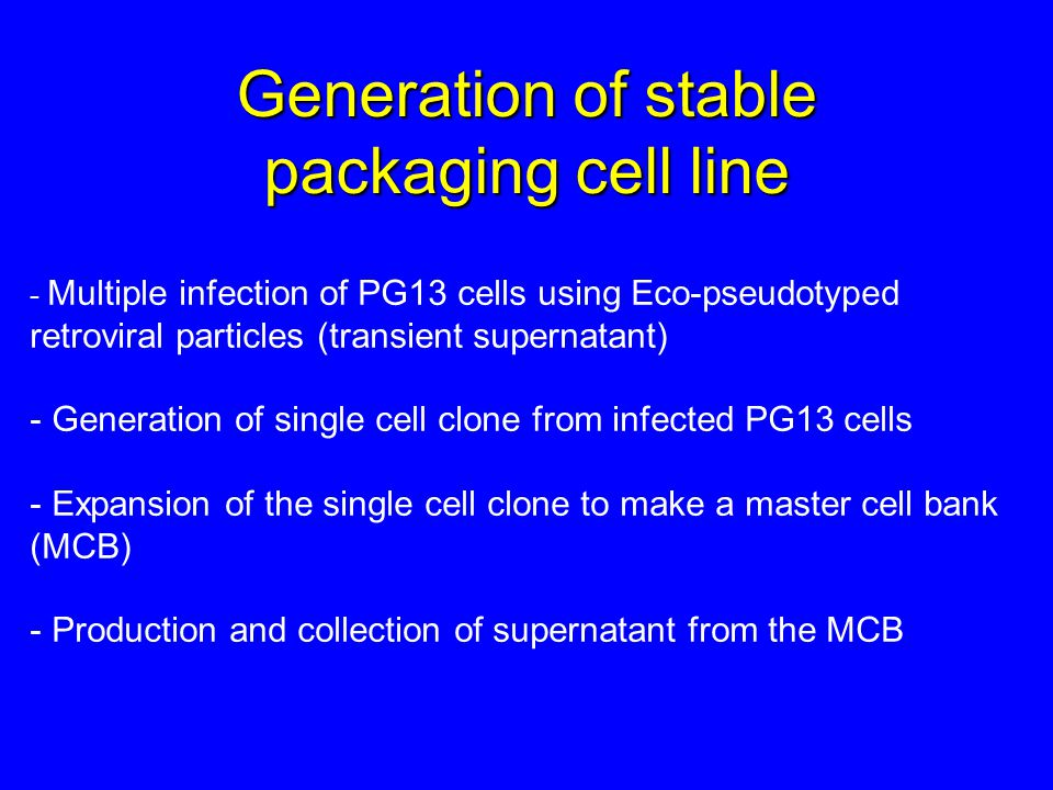 Generation of stable packaging cell line