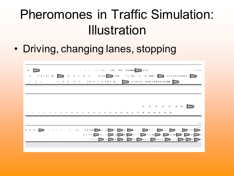 Pheromones in Traffic Simulation: Illustration