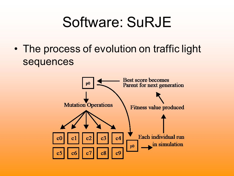 Software: SuRJE The process of evolution on traffic light sequences