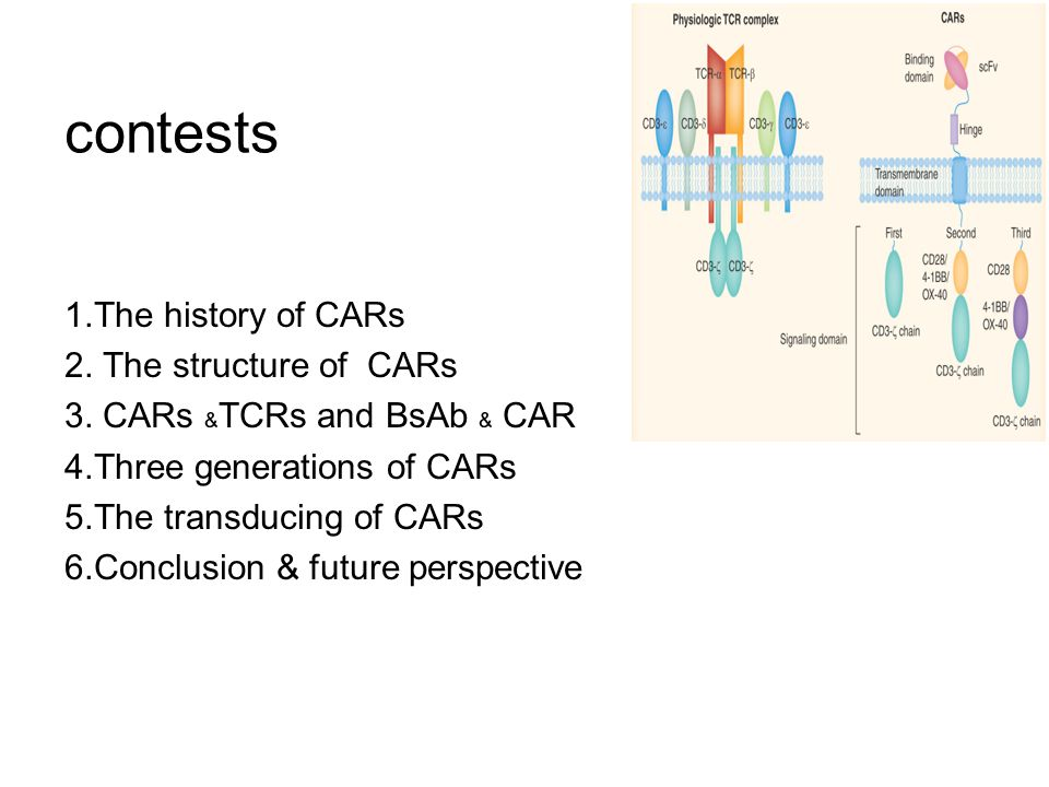contests 1.The history of CARs 2. The structure of CARs
