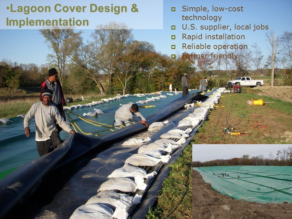 Lagoon Cover Design & Implementation