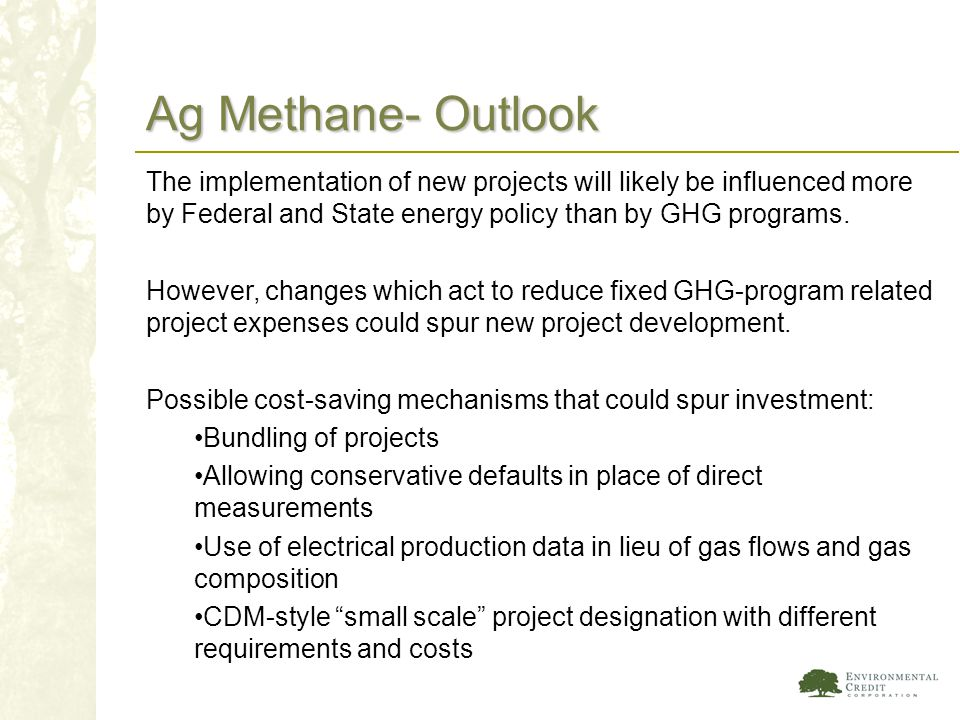 Ag Methane- Outlook The implementation of new projects will likely be influenced more by Federal and State energy policy than by GHG programs.