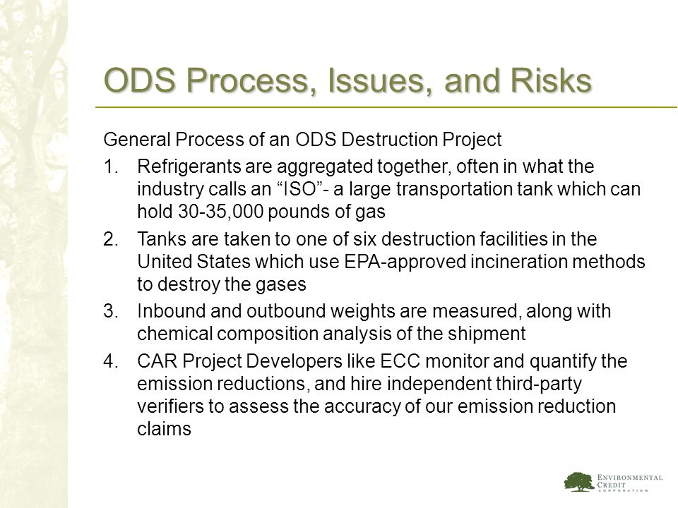 ODS Process, Issues, and Risks