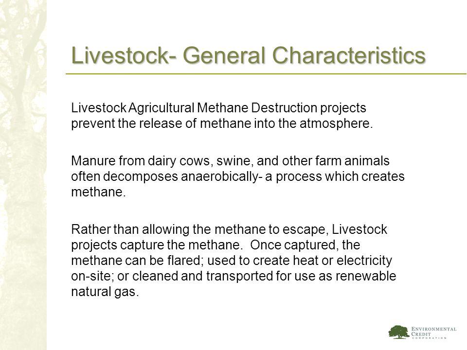 Livestock- General Characteristics