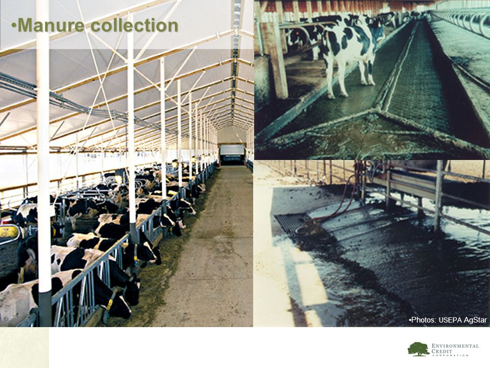 Manure collection Photos: USEPA AgStar