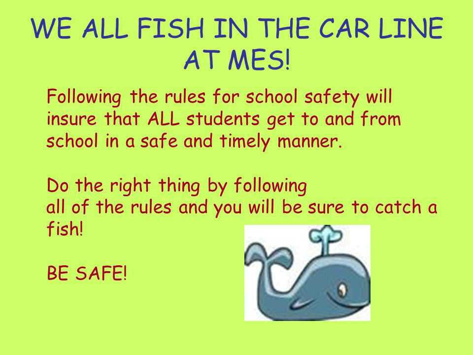 WE ALL FISH IN THE CAR LINE AT MES!