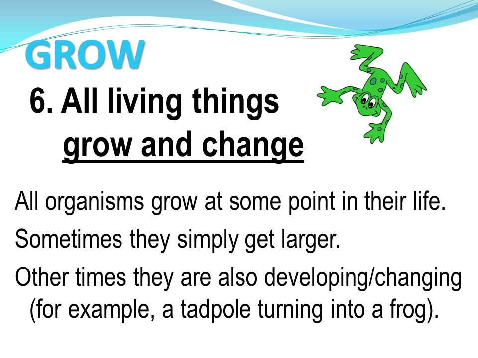 GROW 6. All living things grow and change