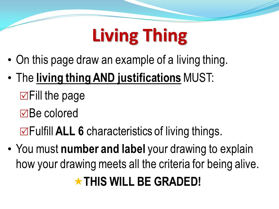 Living Thing On this page draw an example of a living thing.