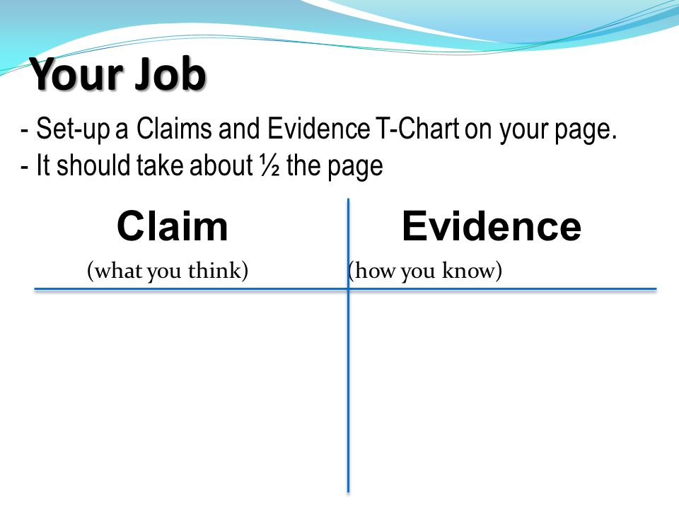 Your Job Claim Evidence