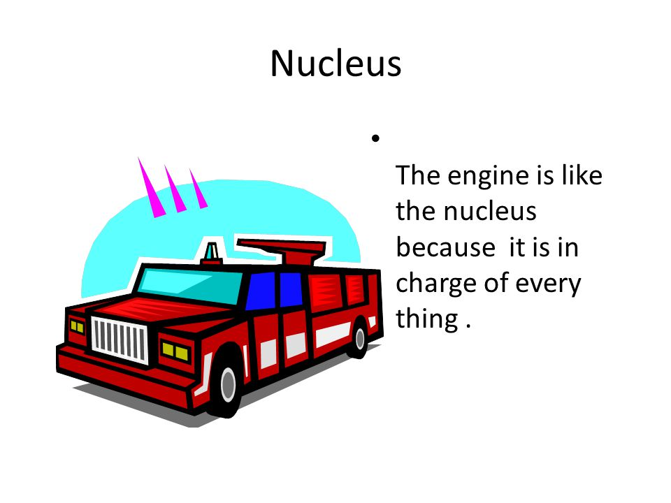 Nucleus The engine is like the nucleus because it is in charge of every thing .