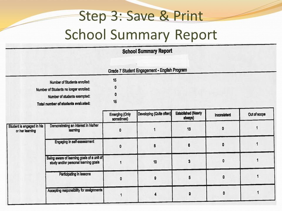 Step 3: Save & Print School Summary Report