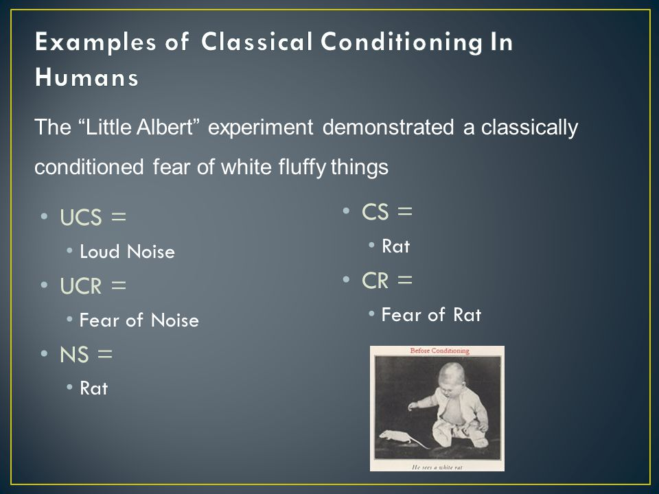 Examples of Classical Conditioning In Humans