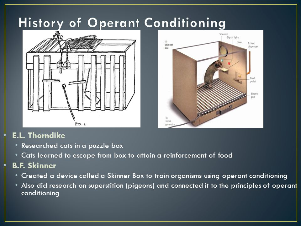 operant conditioning and superstition Now, some of you might wonder what this has to do with superstition  this is  really just a form of operant conditioning, a psychological term.