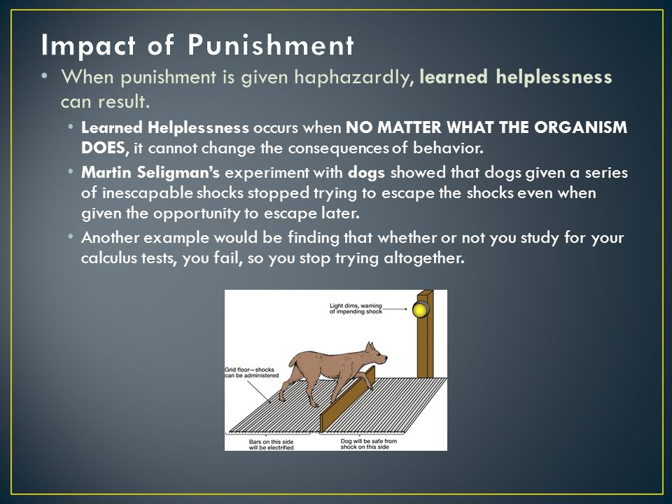 Impact of Punishment When punishment is given haphazardly, learned helplessness can result.
