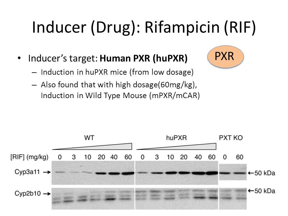 Inducer (Drug): Rifampicin (RIF)