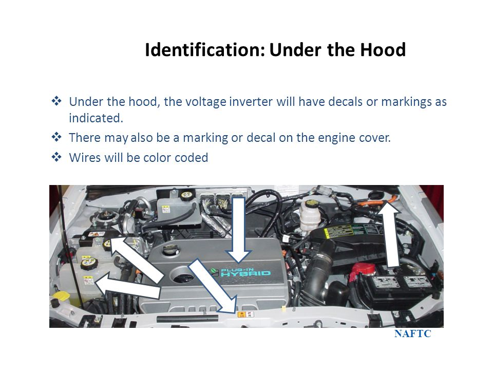 Identification: Under the Hood