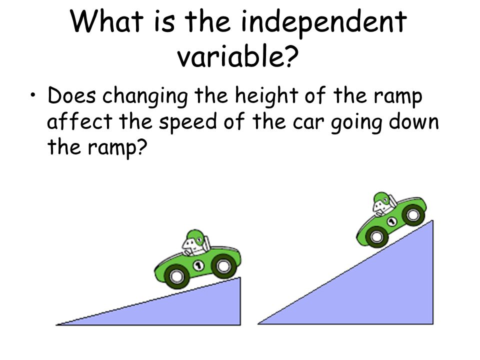 What is the independent variable