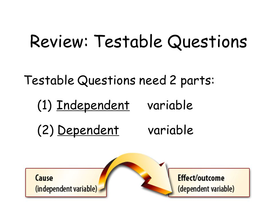 Review: Testable Questions