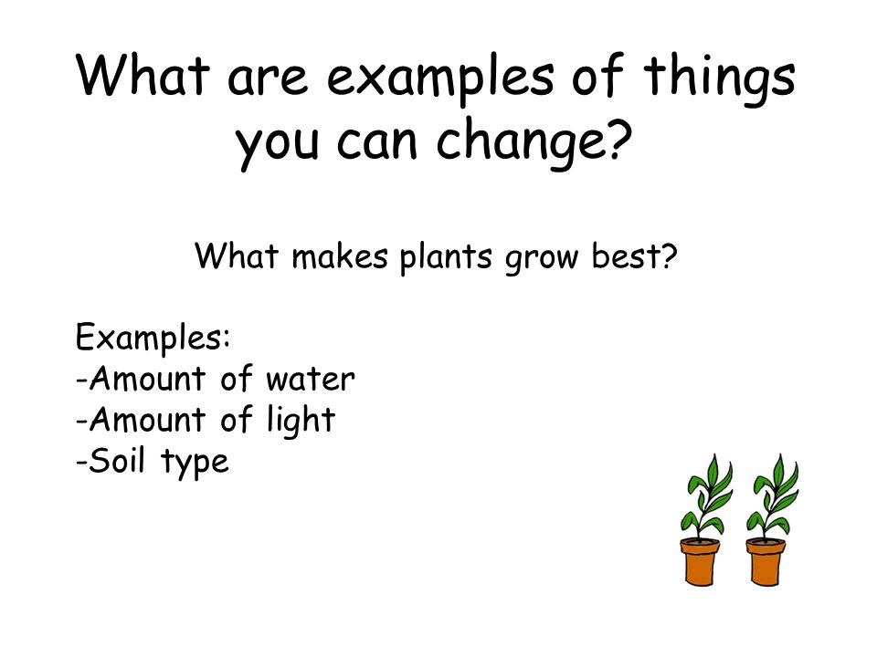 What are examples of things you can change