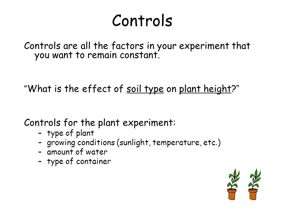 Controls Controls are all the factors in your experiment that you want to remain constant. What is the effect of soil type on plant height