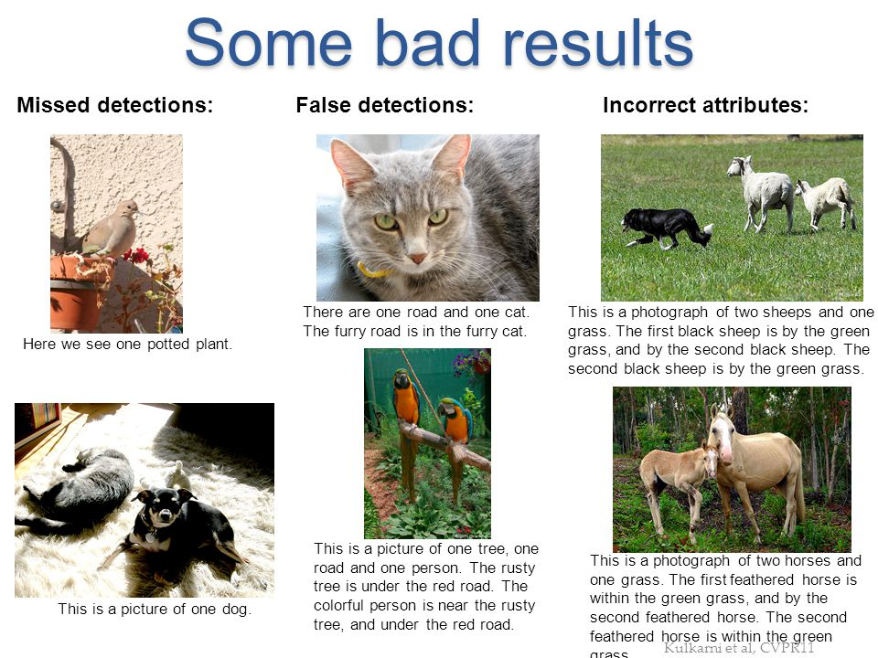 Some bad results Missed detections: False detections: