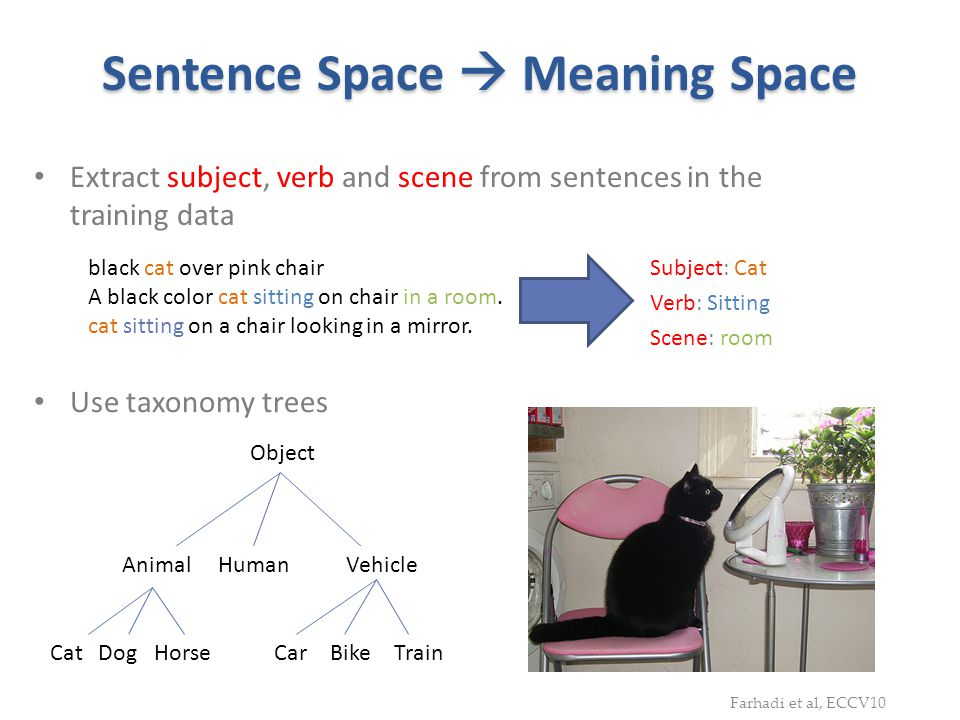 Sentence Space  Meaning Space