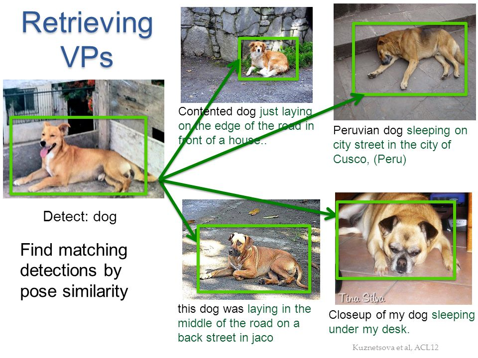 Retrieving VPs Find matching detections by pose similarity Detect: dog