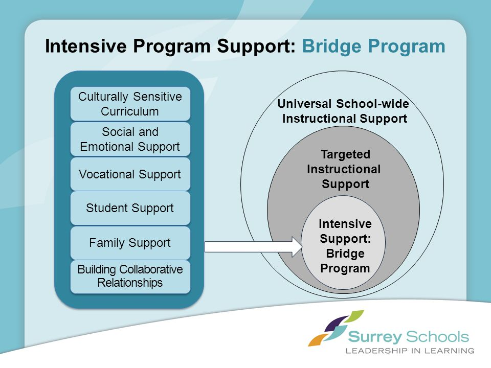 Intensive Program Support: Bridge Program