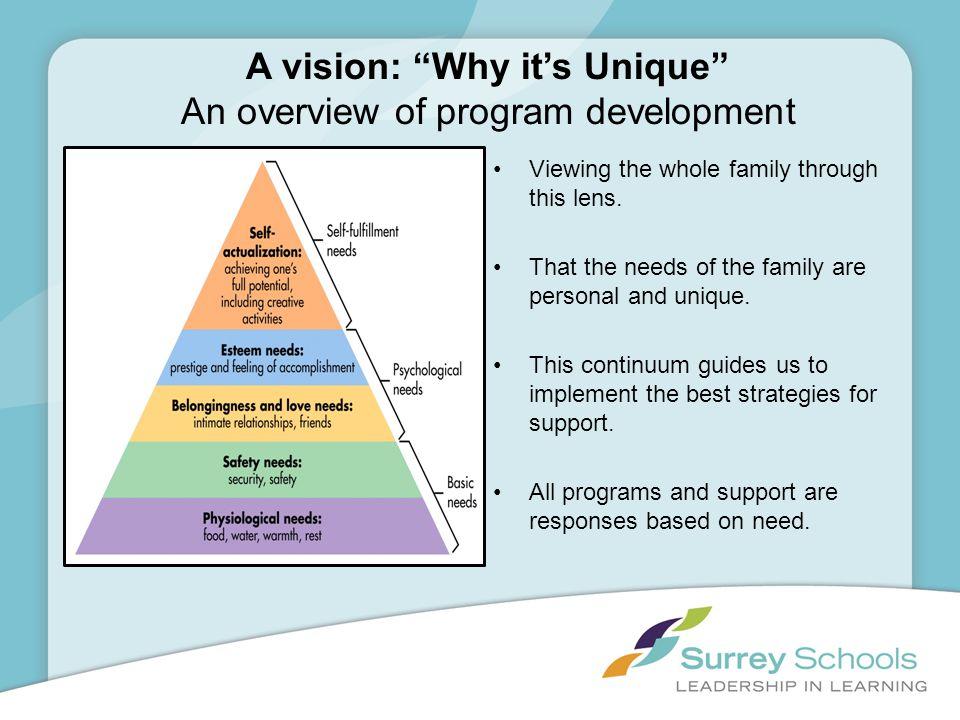 A vision: Why it's Unique An overview of program development